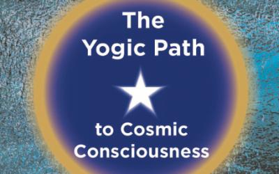 Yogic Meditation Workshop Nov 2018